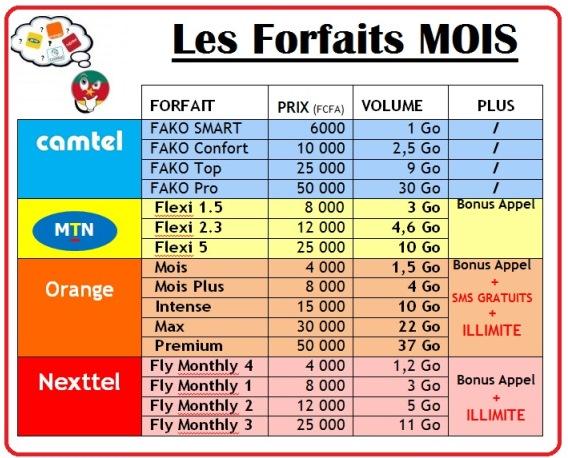 Les forfaits internet Mois chez Camtel Nexttel MTN et Orange